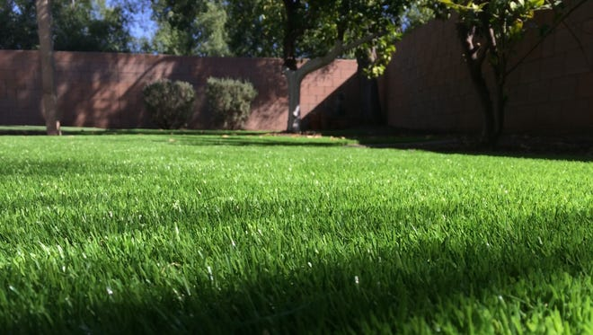 Is it real or fake? It's hard to tell with today's artificial grass.