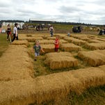 Families come enter the Corn Maze Sunday during the Corn Maze and Fun Festival at Sweet Seasons Farm.