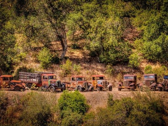 trucks-Beckie Nava