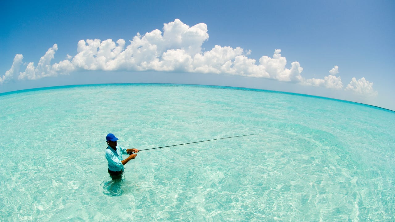Most people visit the Bahamas to sail, fish, snorkel or dive.