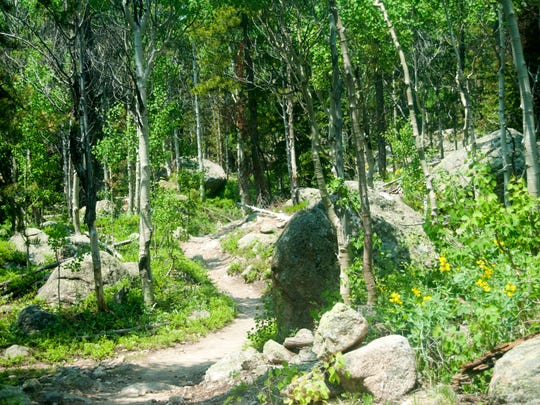 The Sandbeach Lake Trail rises through ponderosa and lodgepole pine and aspen trees and is dotted with colorful wildflowers.