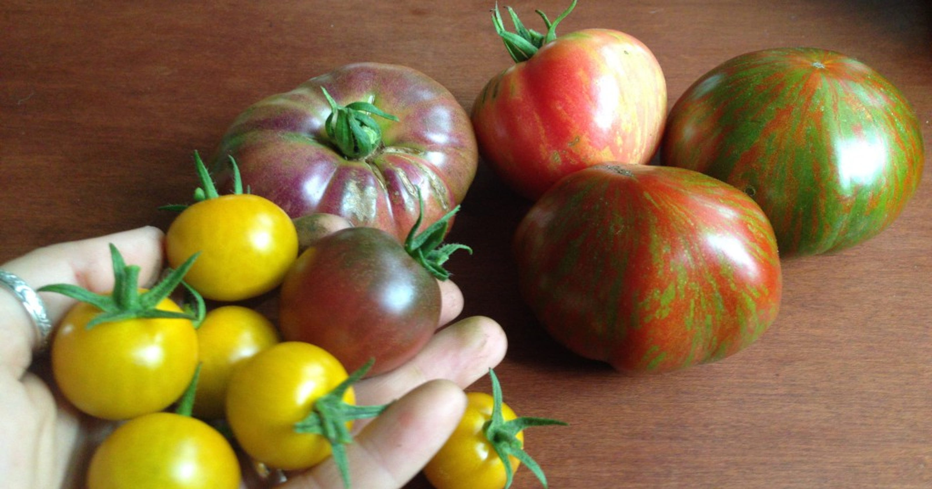 Start small with tomatoes, then grow them all