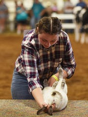 Ashley Knicely shows a rabbit during the showman of showmen competition at the Muskingum County Fair.