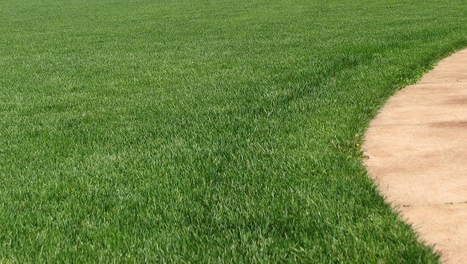 Schedule your first lawn fertilization in late May.