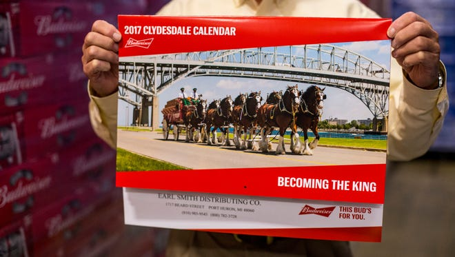 The 2017 Budweiser calendar features a photograph of the Clydesdale horses walking along Thomas Edison Parkway near the Blue Water Bridges.
