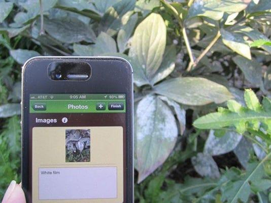 gardenapp.jpg