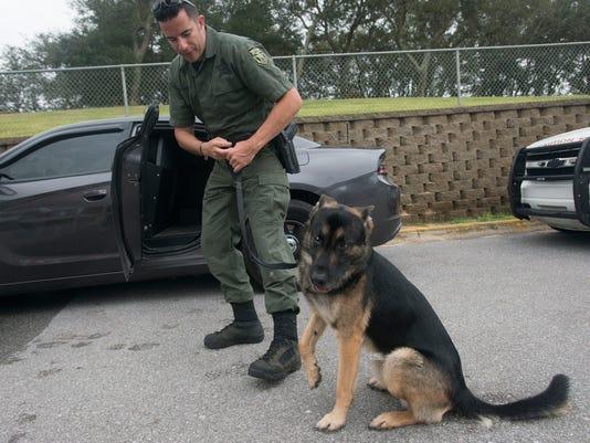 Police Dog Trials