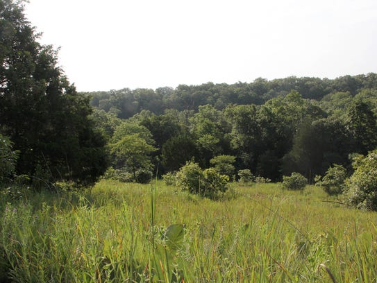 A proposed $446 million mixed-use tourism development, Branson Adventures, would be directly adjacent to the Ruth and Paul Henning Conservation Area on the northwest edge of town.
