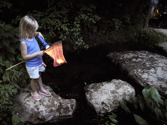 Warner Parks annual Insects of the Night program encourages little ones to explore nature in the park.