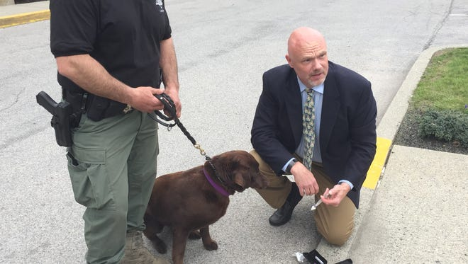 Paul McNamara, tactical veterinarian with the Dutchess County Sheriff's Office, demonstrates the use of naloxone on Remi, a police dog.