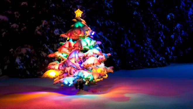 Snow covered Christmas tree with multi-colored lights on at night with a blue moon light cast