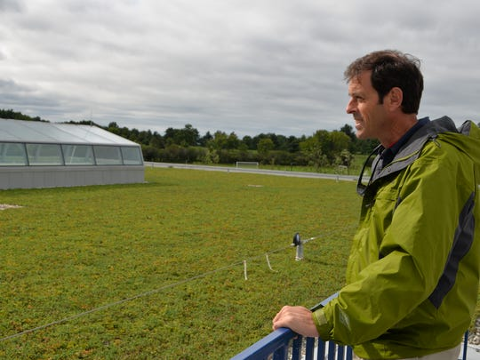 Middlebury College's Mark Gleason looks out at the green roof that manages storm water run-off at the Squash Center on Sept. 12.