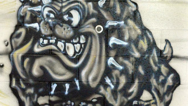 Virgin Valley Bulldogs