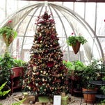The conservatory in the Moss Mansion in Billings is decorated with a tree sponsored by the Northern Hotel, which P.B. Moss also built.