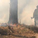 Flagstaff Wildland Firefighter making sure line dug around a prescribed burn isn't breached.