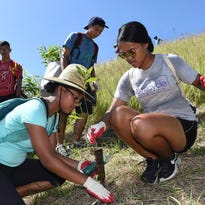 2,000 trees planted in Merizo for watershed reforestation project