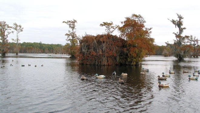 A drawdown of Iatt Lake in Grant Parish is set to begin May 16 to help control vegetation.