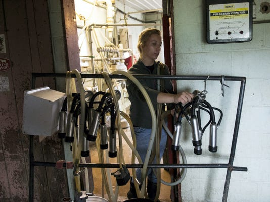 MacKenzie Keener preps the milk hoses at Chris De Will dairy farm in Swatara Township on Thursday, June 18, 2015. F Jeremy Long -- Lebanon Daily News