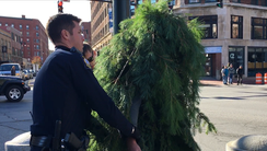 A man dressed as a tree was arrested Monday after blocking