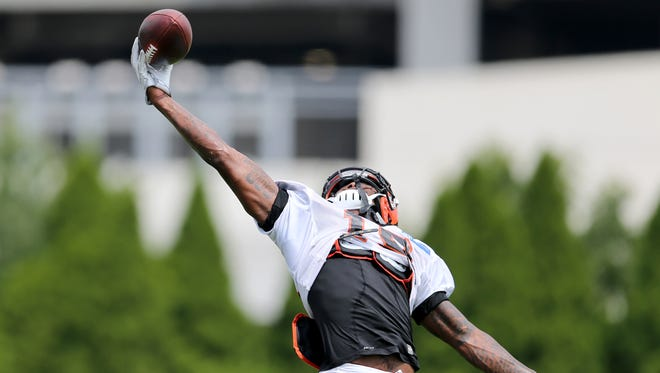 Cincinnati Bengals wide receiver Auden Tate (19) competes a one-handed catch in the end zone during Cincinnati Bengals training camp on Wednesday.