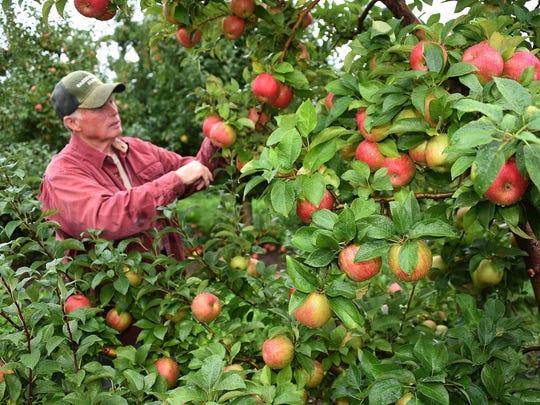 Jim Bardenhagen, a sixth-generation fruit farmer of