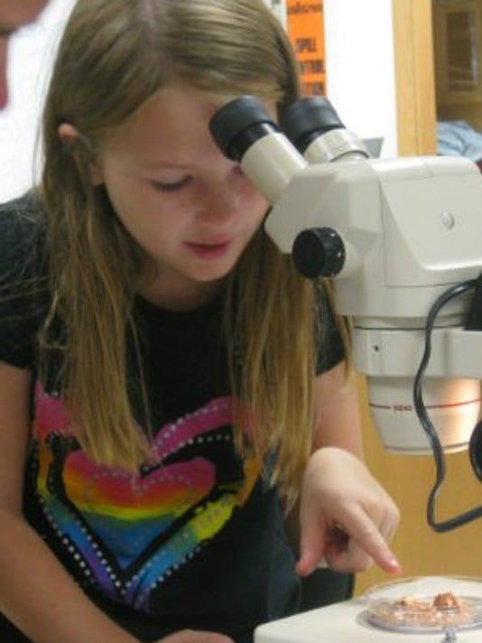 WSF Microscope.JPG