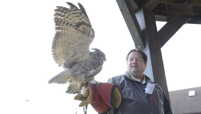 Wildlife of Wisconsin volunteer Jerry Theys brings out a great horned owl during an educational presentation at the Owl Fest at Woodland Dunes Nature Center and Preserve on Saturday, Oct. 17, 2015 in Two Rivers. The great horned owl was a large owl and Theys had to wear a pair of four-layered gloves for the presentation.