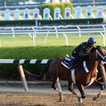 Tale of Verve works Saturday for the Belmont Stakes.