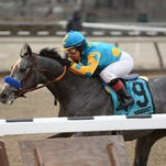 El Kabeir won Aqueduct's Jerome by 4 3/4 lengths on Jan. 3 at Aqueduct.
