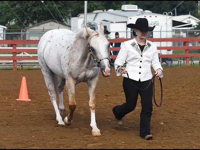 Junior Fair Horse Judging took place in the horse arena