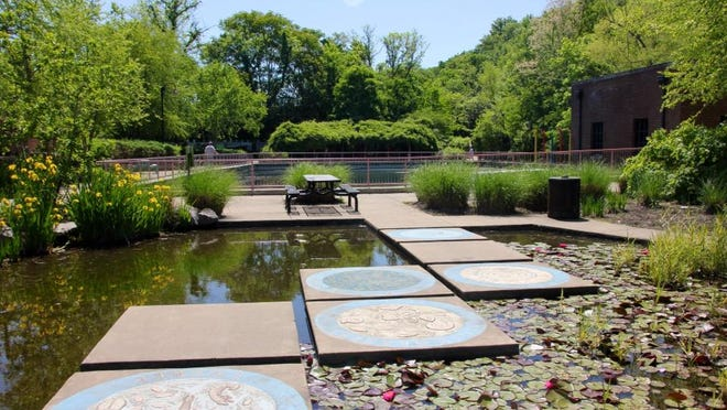 The lily pond at Discovery Center at Murfree Spring is teeming with life. The water garden will be featured on the Secret Garden Tour.