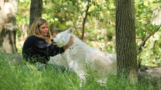 Becky Mace, co-founder of the Lakota Wolf Preserve, with Sequoia.