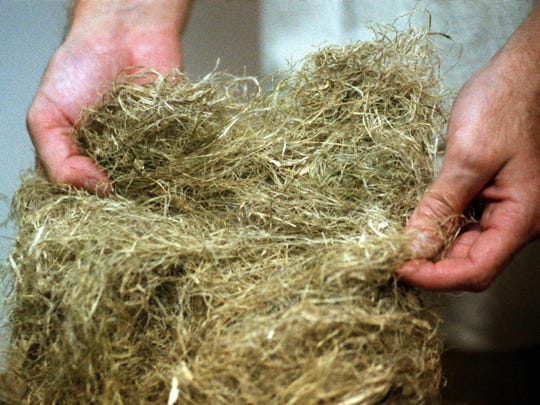 Hemp fiber in a 1994 file image. (Geraldine Wilkins/Los Angeles Times/TNS)
