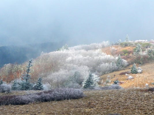 BMN 122415 Roan Mountain