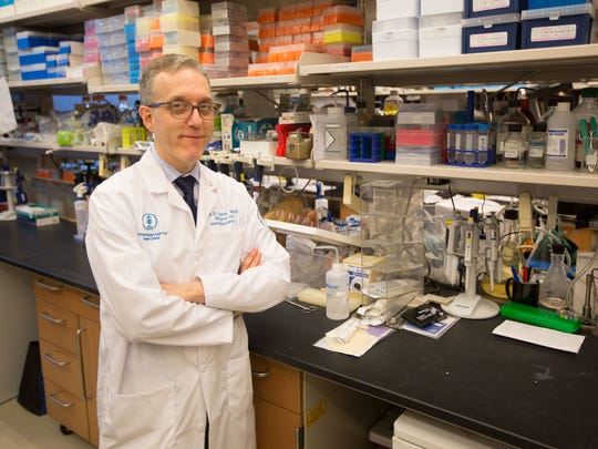 Dr. Jedd D. Wolchok , Chief, Melanoma and Immunotherapeutics