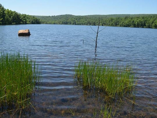 The new park features a mountaintop lake with bluegill