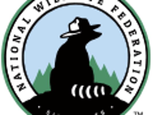 ntional-Wildlife-Federation-1-.png