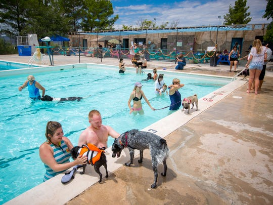 Dogs take to the pool during the fourth annual Bow