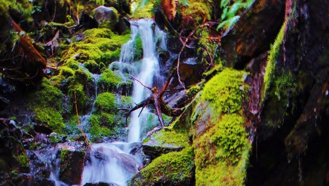 """A waterfall on the way to the summit of Deer Mountain near Ketchikan, Alaska."""