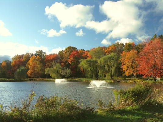 Harding Township Bayne Park