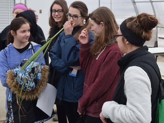 Students sniffed lemon grass, a tropical perennial,