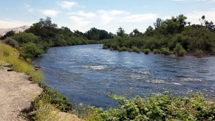 Tulare, Kings and Fresno counites have closed the Kings River fro recreation.