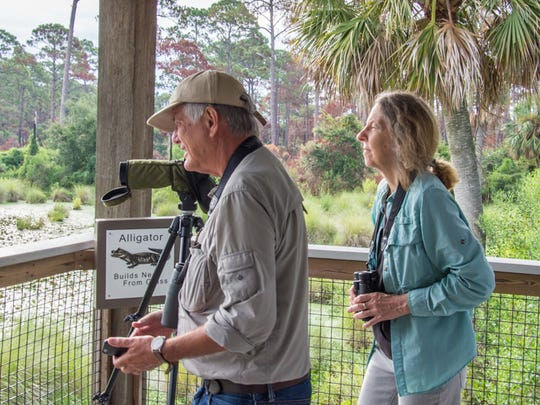 Don Morrow leading bird field trips in St Marks National Wildlife Refuge.