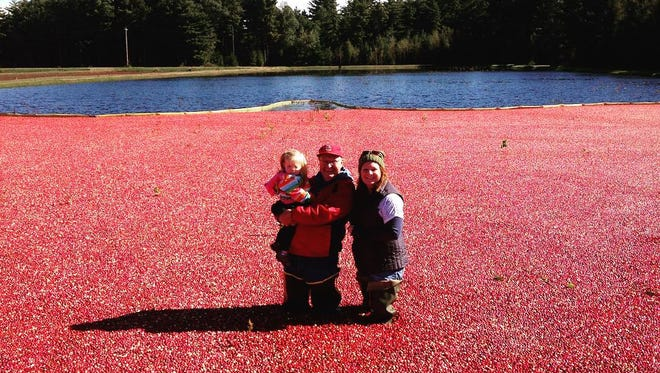 Wetherby Cranberry Company – Warrens
