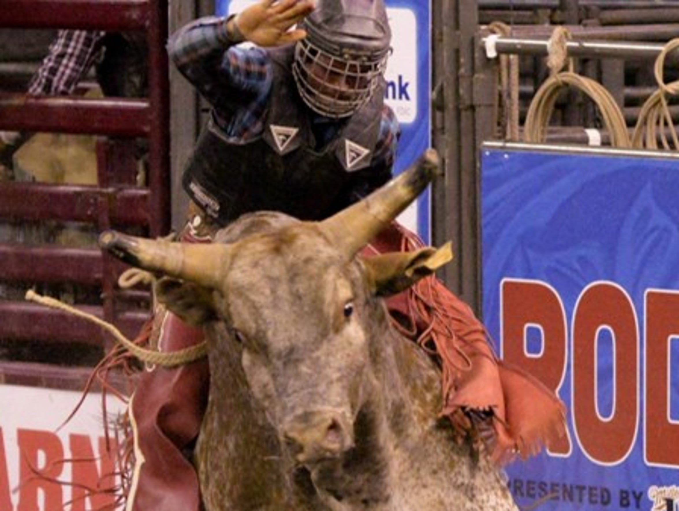 Rodeo Corpus Christi draws contestants from all over