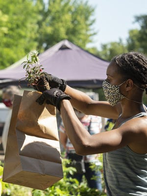 Though changes have been made to keep vendors and customers safe while shopping, the outdoor Haymaker Farmers' Market continues to be a success. Pictured, India Nunn of Western Reserve Heritage Seed Co. prepares an order for a customer on June 20.
