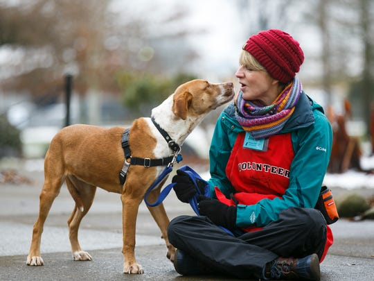 Adeline, a mixed-breed shelter dog, goes in for a kiss for volunteer Jolene Jones at the Willamette Humane Society on Wednesday, Jan. 11, 2017. Two resolutions to select an official state dog for Oregon have been introduced in the State Legislature; one designates a Border Collie, the other nominates rescued shelter dogs for the title.