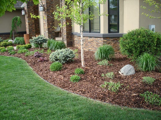 Pine bark is the ultimate mulch