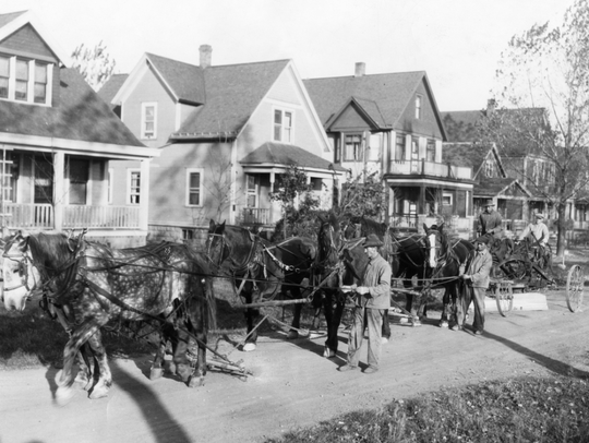 Teams of horses were part of the road paving and sewer