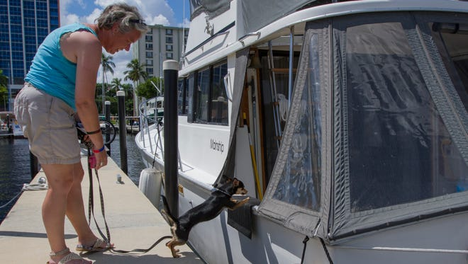 """Cristin Yakes waits as her dog """"Bella"""" jumps to get on their live-aboard boat """"Out Law"""" Friday morning at the Fort Myers Yacht Basin downtown. When asked about the possible privatization of the public facility she said, """"If it's going to do something good for the Yacht Basin, I don't see a problem with it.  But they keep seeming to have deals fall through. I think they should kind of leave it the way it is."""""""